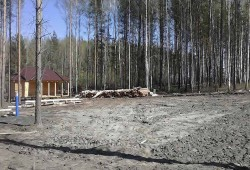 Кирпичный коттедж в лесу